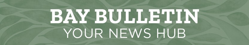 link to newsletter hub called Bay Bulletin